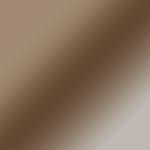 Bronze Acrylic Vision Panel